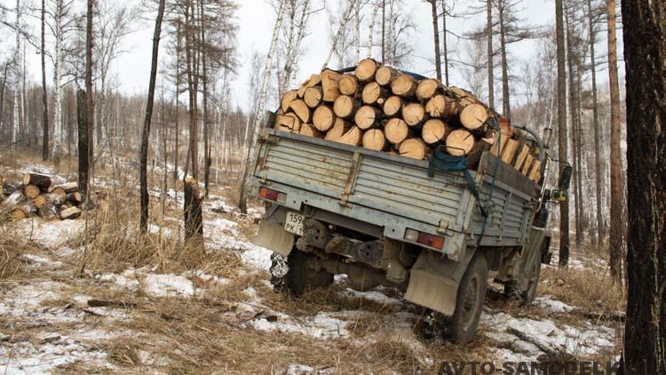 самодельный грузовик
